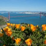 View of Golden Gate Bridge & San Francisco from Marin Headlands.
