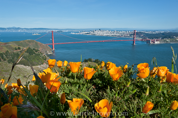View of Golden Gate Bridge & San Francisco from Marin Headlands.