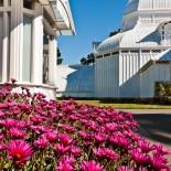 Conservatory, Golden Gardens, San Francisco