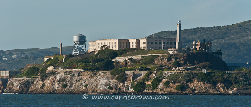 Carrie Brown  |  Alcatraz