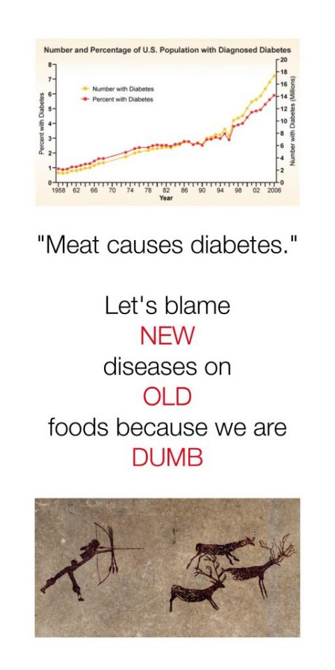 www.carriebrown.com | Does Eating Meat Cause Diabetes | Ted Naiman